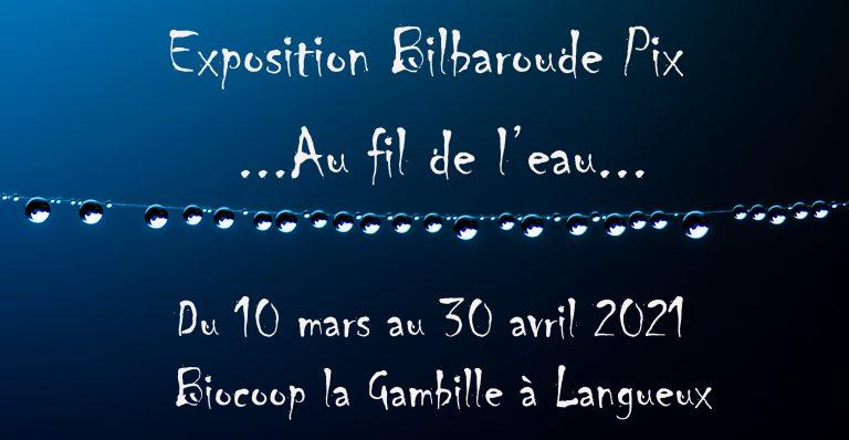 """Exposition """"Au fil de l'eau"""", à la Biocoop la Gambille de Trégueux"""