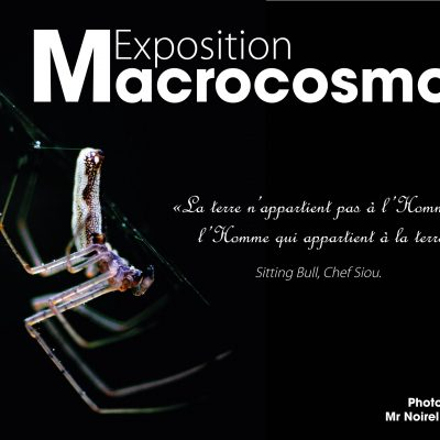 "Affiche d'exposition ""Macrocosmos"""